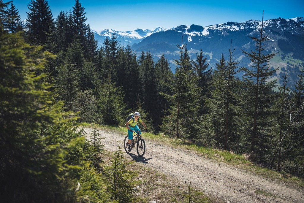 Why Mountainbiking is the perfect sports for me